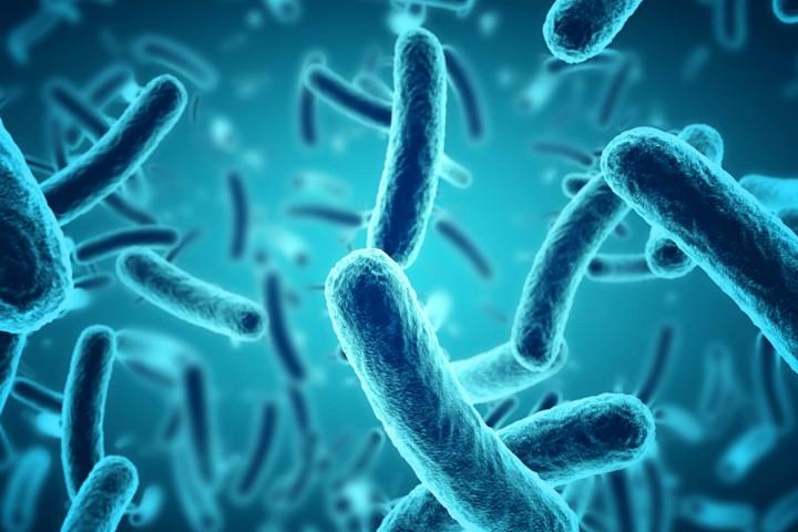 Resistenze batteriche agli antibiotici